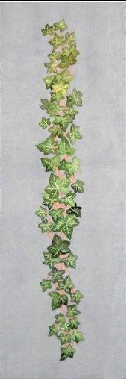 COCCARDA ART. CMT33 immagine 3